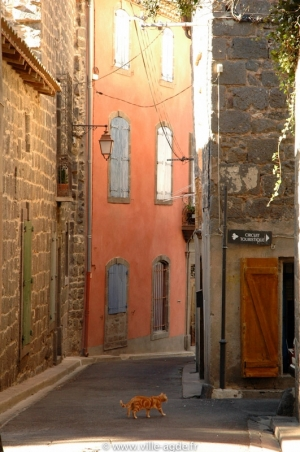 Ruelle du coeur de ville d'Agde
