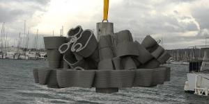 Immersion de deux nouveaux récifs artificiels au Cap d'Agde