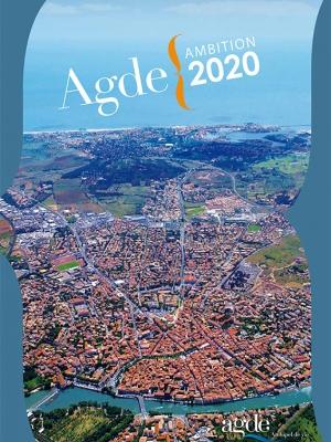 R union publique autour du projet de ville agde ambition for Projet cap d agde 2020