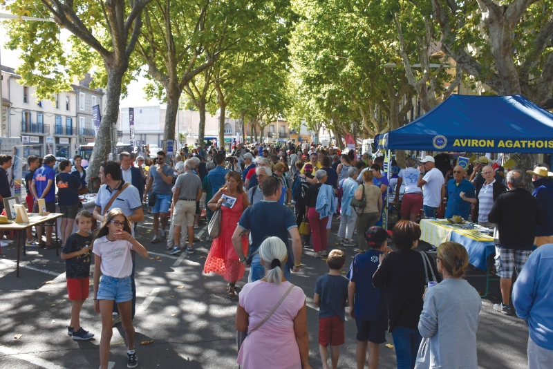 Records battus pour la Fête des associations